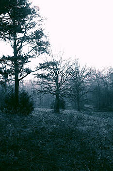 Nina Fosdick - Misty Morning Memories