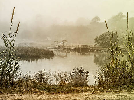 Terry Shoemaker - Misty Morning on Pawleys Island