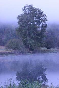 Misty morning on the St Joe 3 by Linda Meyer