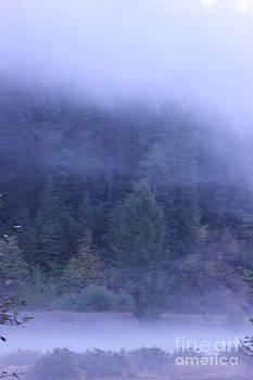 Misty morning on the St Joe 4 by Linda Meyer
