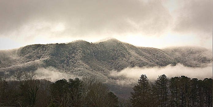 Misty Mountain Hop... by Tammy Schneider
