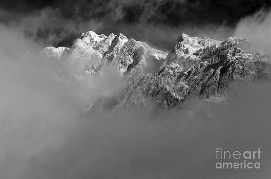 Misty Mountains in Mono by Dee Cresswell