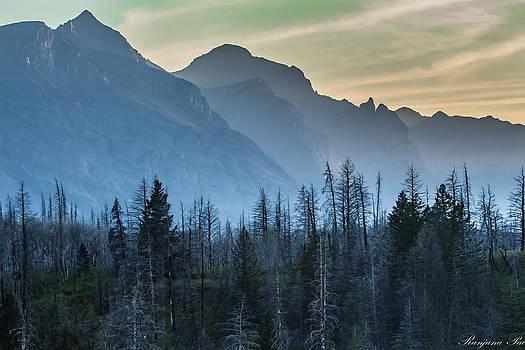 Misty Mountains by Ranjana Pai