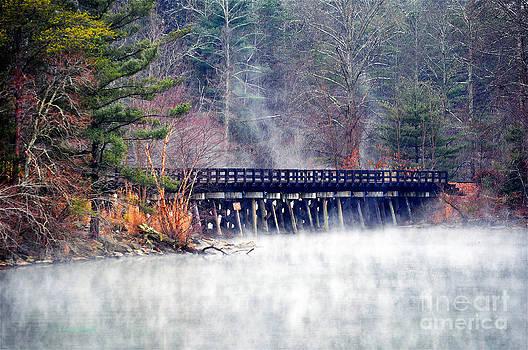 Misty Rails by Li Newton