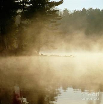 James A Prince - Misty Reservoir