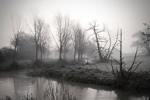 Fizzy Image - Misty river running through fields