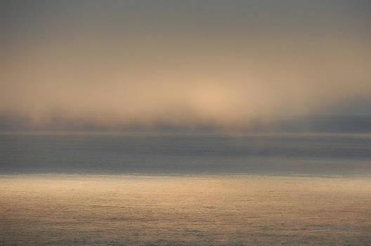 Donna Blackhall - Misty Sea