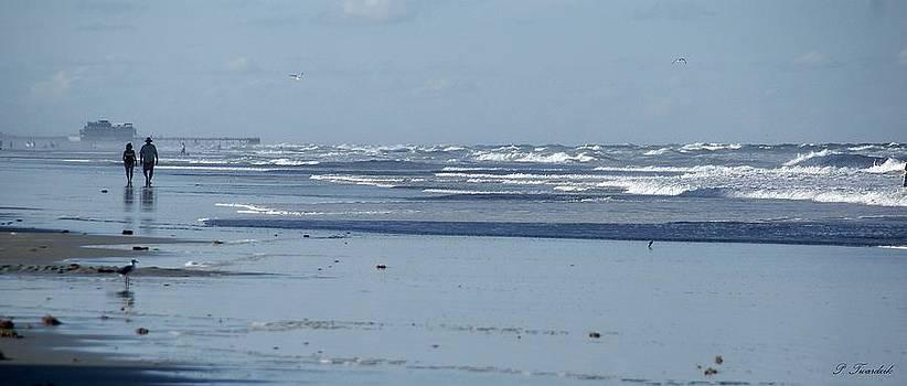 Patricia Twardzik - Misty Stroll on the Beach