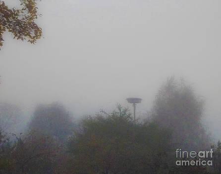 Algirdas Lukas - Misty View 15 11