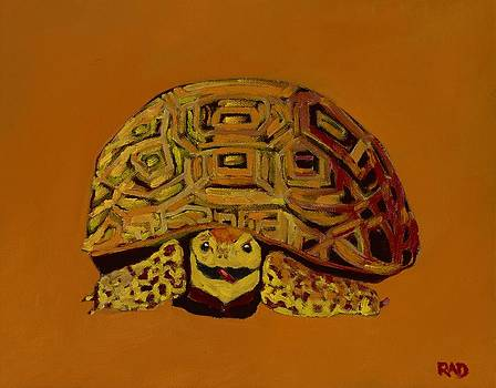 Mo the Tortoise by Randine Dodson