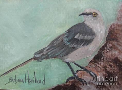 Mockingbird by Barbara Haviland