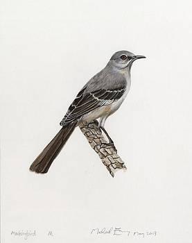 Michael Earney - Mockingbird