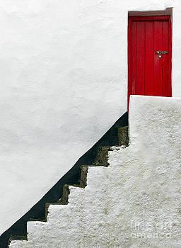 Svetlana Sewell - Modern Abstract Door