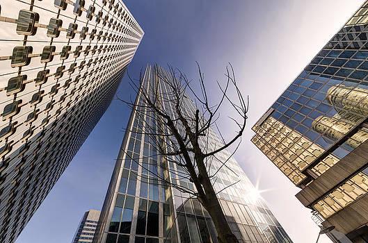 Modern Buildings by Francesco Rizzato