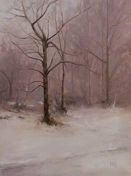 Mogilsa Forrest by Thorgrimur Andri Einarsson