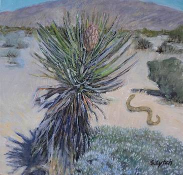 Mohave Green by Sandra Lytch