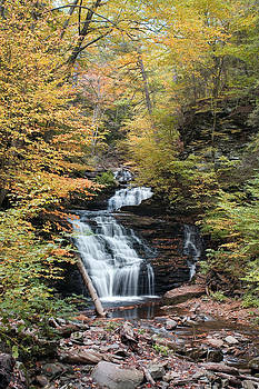 Mohican Falls Framed By Autumn Splendor by Gene Walls