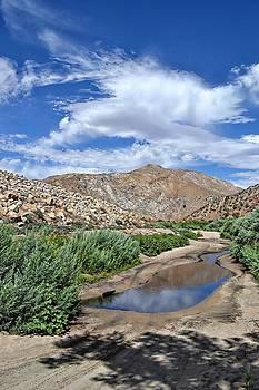 Randal Bruck - Mojave Sky
