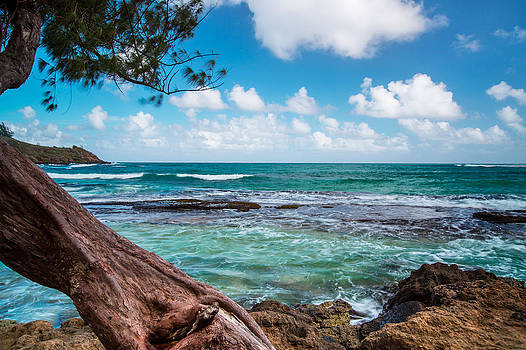 Moloaa Beach  Kauai by Sam Amato