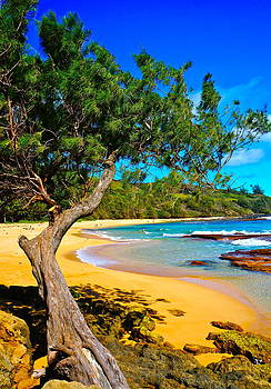 Moloaa Beach Kauai by Tracey McQuain