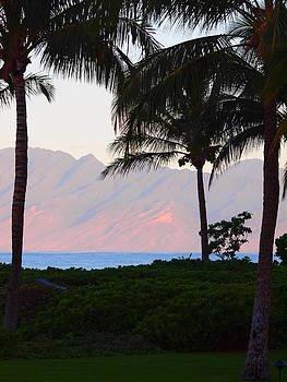 Molokai at Sunrise by Jim Moore
