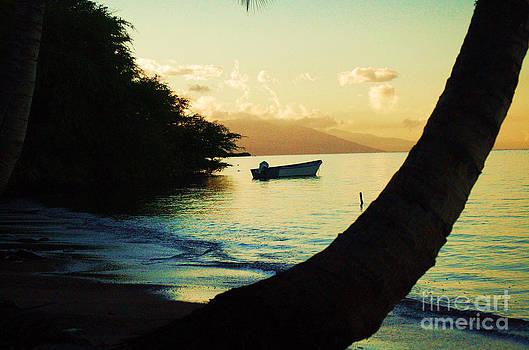 Molokai Beach by Terry Holliday