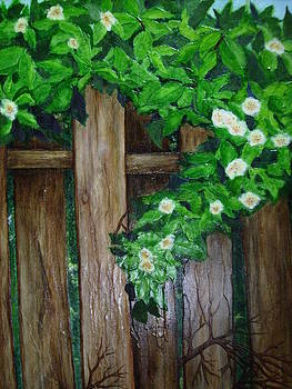 Mom's Backyard Cedar Fence by Jan Wendt
