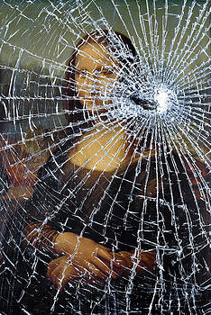 Mona Lisa Shattered by Brian Carson