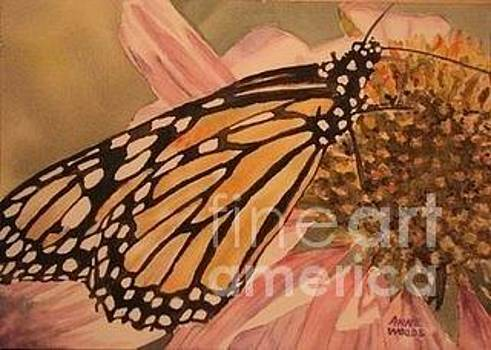 Monarch by Anne Woods