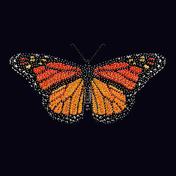 Monarch Butterfly Bedazzled by R  Allen Swezey