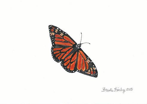 Monarch Butterfly by Brooke Finley