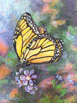 Monarch butterfly by Judie White