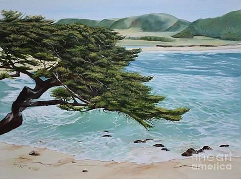 Monastery Beach by Mary Rogers