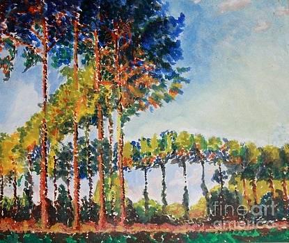 Aditi Bhatt - Monet