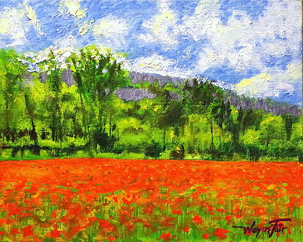 Monet's Poppy Field by Wayne Fair