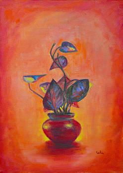 Usha Shantharam - Money Plant Silhouette 2