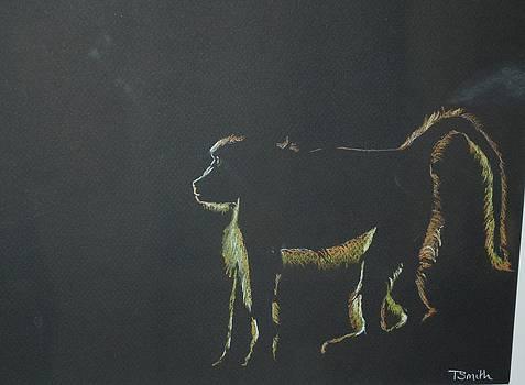 Monkey at Dawn by Teresa Smith