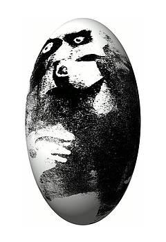 Monkey In The Egg by Krzysztof Spieczonek