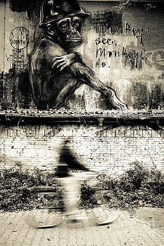 Hannes Cmarits - Monkey see - Monkey do