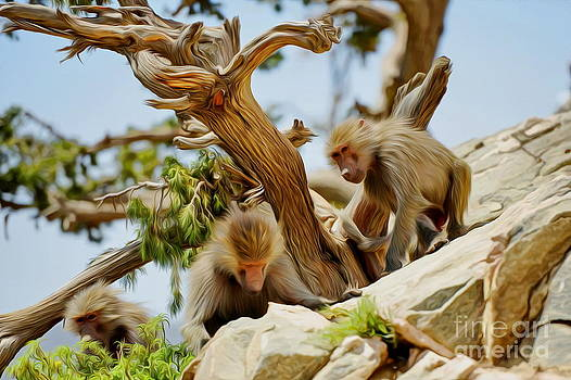 Monkeys on Mountain by George Paris