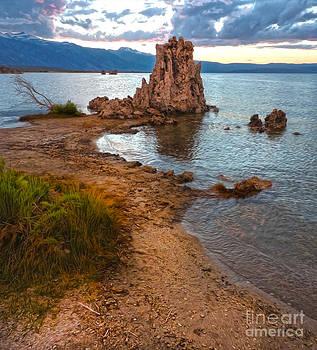 Gregory Dyer - Mono Lake - 30