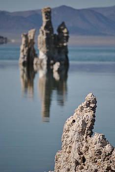 Jeff Brunton - Mono Lake 029