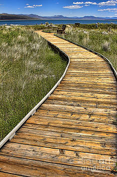 Mono Lake Boardwalk 2 by Jason Abando
