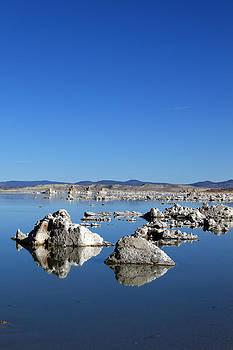 Mono Lake Rocks by Daniela Safarikova