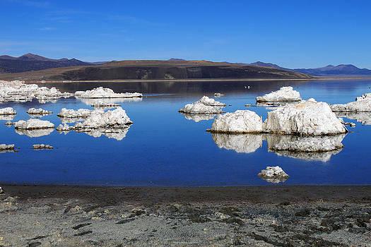 Mono Lake Waterscape by Daniela Safarikova