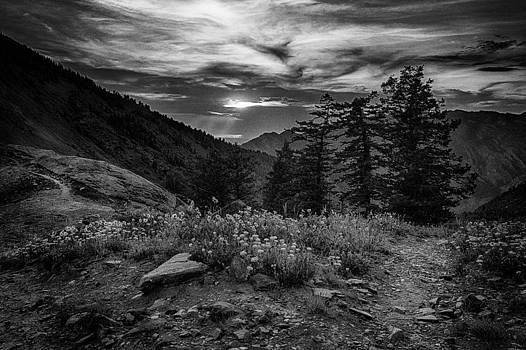 Monochrome Overlook by Kevin Rowe