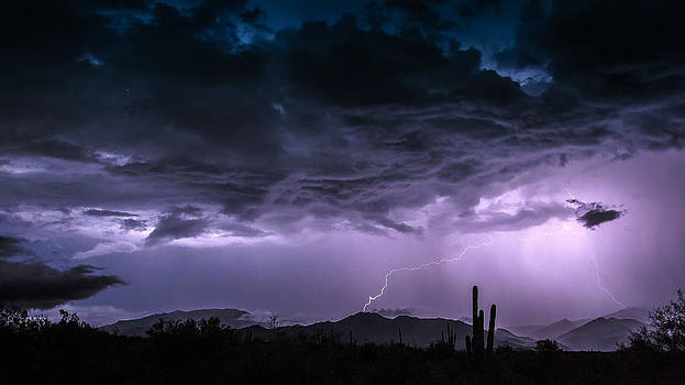 Monsoon Madness by Stacy LeClair
