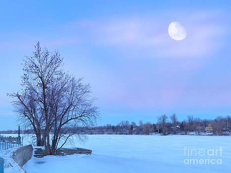 Mont Saint Hilaire Quebec Winter by Laurent Lucuix