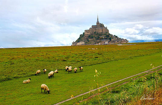 Diana Haronis - Mont Saint Michel with Sheep