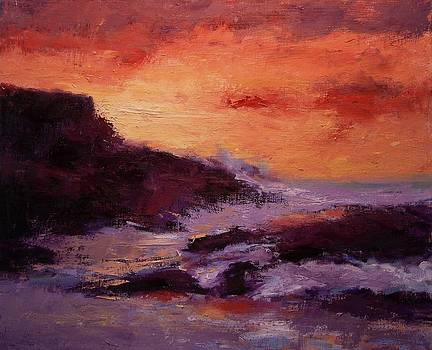 Montana De Oro at sunset by R W Goetting